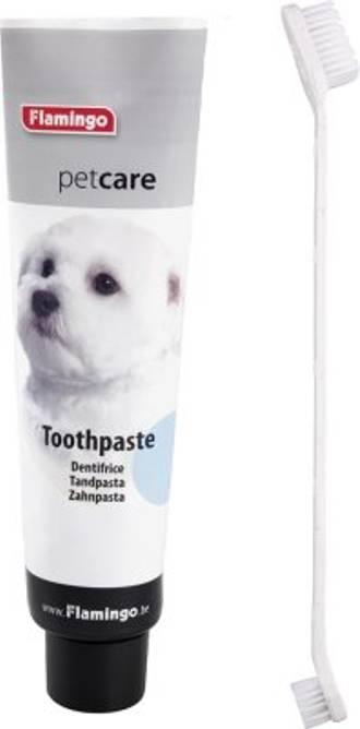 Bilde av Tannkrem og Tannbørste