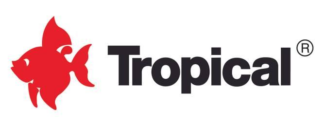 Bilde av Tropical