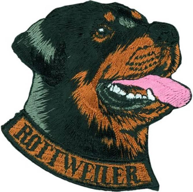 Bilde av Rottweiler hode, strykemerke.